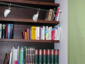 Bücherregal und Kamin